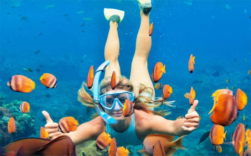 Things To Do in the BVI