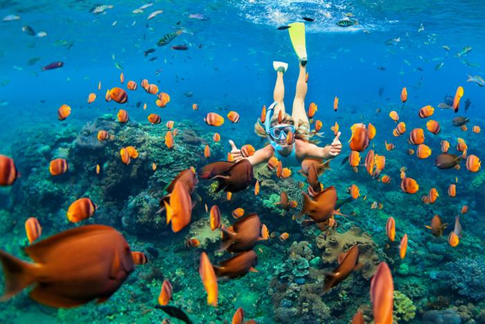 Exumas snorkeling