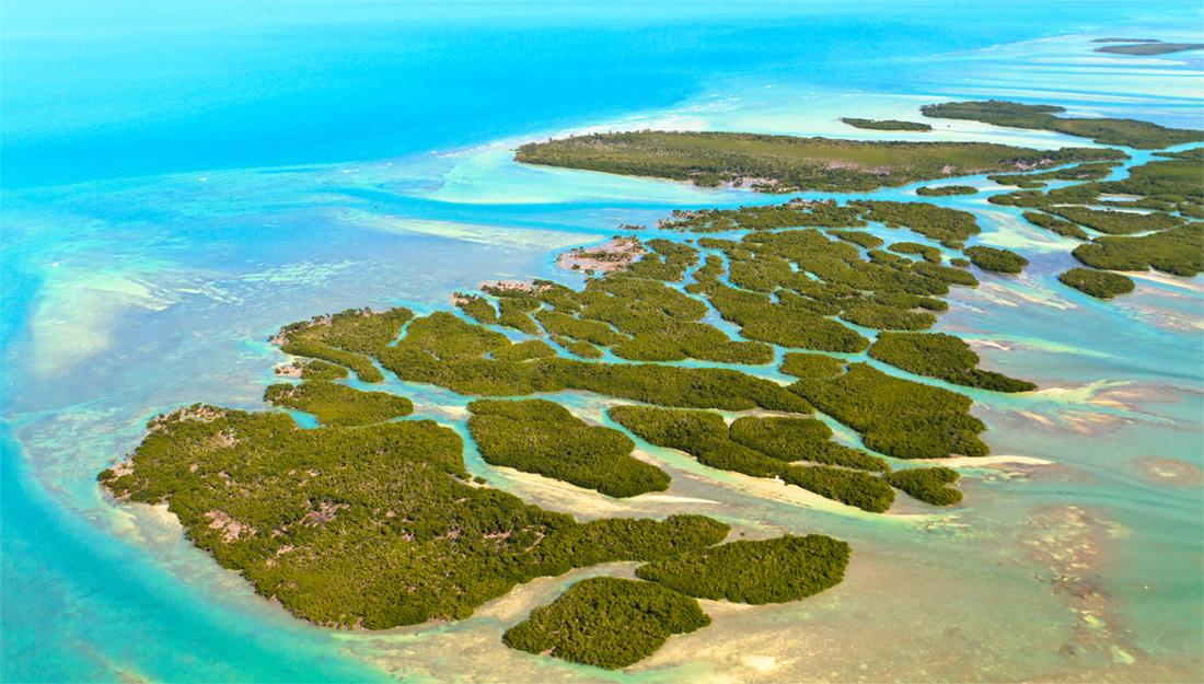 Florida Keys main image