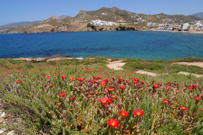 Naxos yacht charters
