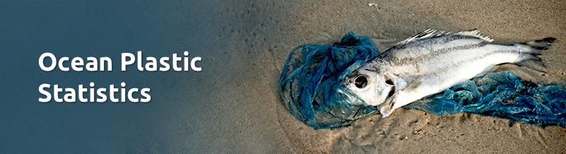 Ocean plastic statistics banner