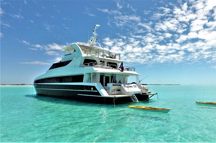 Pegasus IX catamaran