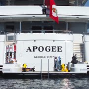 Apogee swim platform